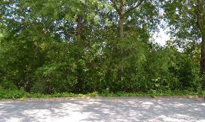 Phenix City Residential Lots & Land For Sale: 11th Avenue