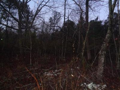 Pine Mountain Residential Lots & Land For Sale: Lot 7 Mountain Top Way