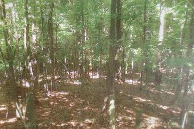 Columbus Residential Lots & Land For Sale: 4648 Pate Drive