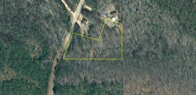 Hamilton Residential Lots & Land For Sale: Mountain Road