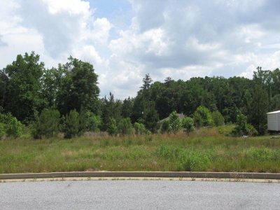 Columbus Residential Lots & Land For Sale: 289 Ella Court