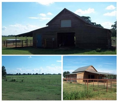 Perry Residential Lots & Land For Sale: 124 Felton