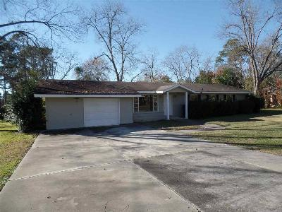 Perry Single Family Home For Sale: 817 Moreland Avenue