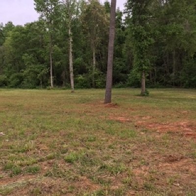 Kathleen Residential Lots & Land For Sale: 422 Downing Circle