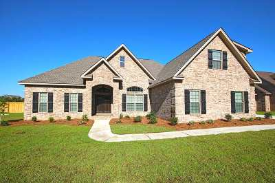 Bibb County, Crawford County, Houston County, Peach County Single Family Home For Sale: 207 Woodland