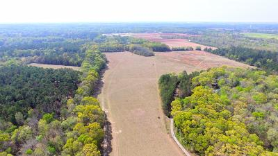 Perry Residential Lots & Land For Sale: South Lake Dr