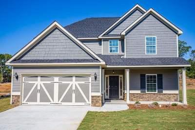 Blue Ridge Single Family Home For Sale: 107 Catskill Lane
