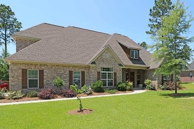 Bibb County, Crawford County, Houston County, Peach County Single Family Home For Sale: 804 St. Mary's
