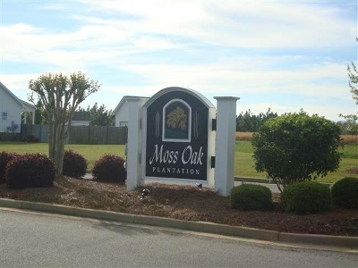 Kathleen Residential Lots & Land For Sale: 213 Silk Tree Trace