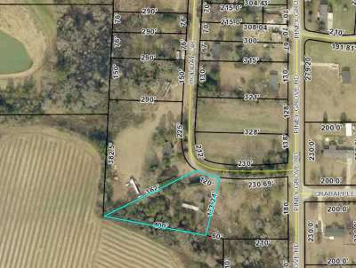 Kathleen Residential Lots & Land For Sale: 256 Holiday