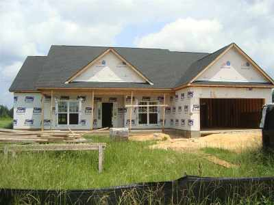 Kathleen Single Family Home For Sale: 203 Silk Tree