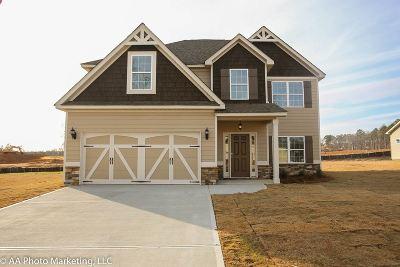 Blue Ridge Single Family Home For Sale: 109 Catskill Lane
