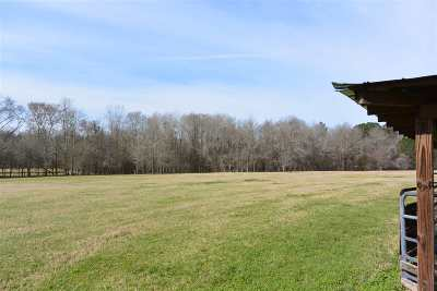 Hawkinsville GA Residential Lots & Land For Sale: $250,000