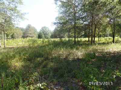 Bibb County, Crawford County, Houston County, Monroe County, Peach County Residential Lots & Land For Sale: Hwy 41 S