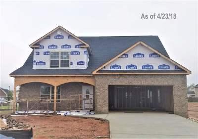 Warner Robins Single Family Home For Sale: 200 Peyton Ray Lane