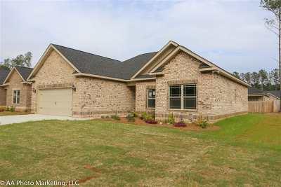 Bibb County, Crawford County, Houston County, Peach County Single Family Home For Sale: 117 Pilgrim Mill Trail