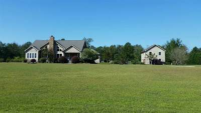 Perry Single Family Home For Sale: 223 Lake Joy Road