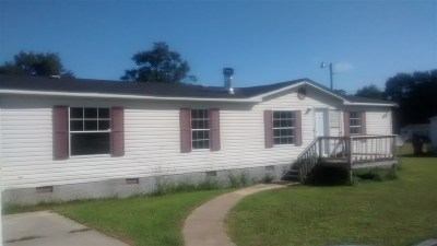 Byron Single Family Home For Sale: 221 Williamsburg Trail
