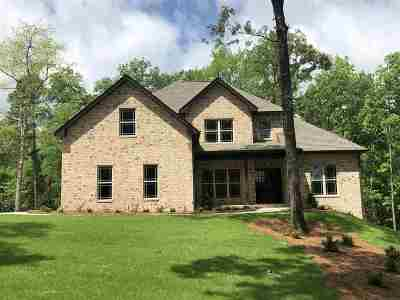 Single Family Home For Sale: 119 Lookout Trail