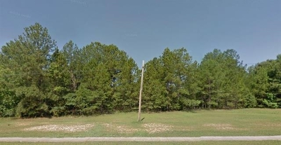 Warner Robins GA Commercial For Sale: $49,000