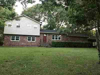 Warner Robins Single Family Home For Sale: 205 Rio Pinar Drive