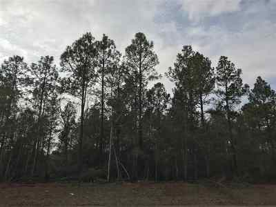 Perry Residential Lots & Land For Sale: 230 Mossy Lake Road
