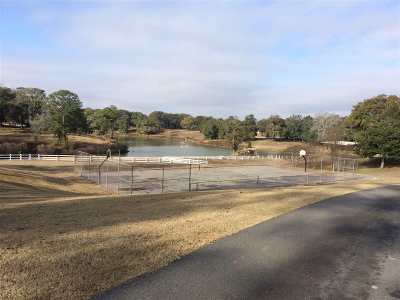 Perry Residential Lots & Land For Sale: 145 Todd Road