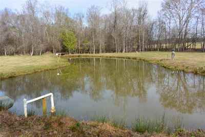 Hawkinsville GA Residential Lots & Land For Sale: $240,000