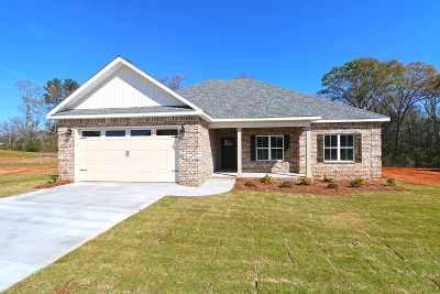 Kathleen Single Family Home For Sale: 211 Hunts Landing Drive