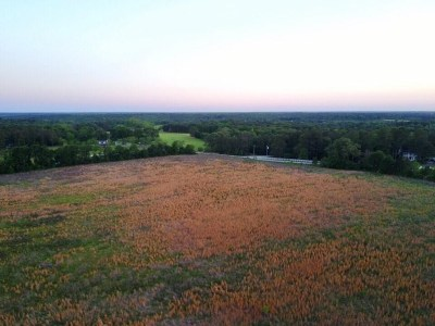Peach County Residential Lots & Land For Sale: Tract