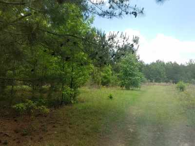 Residential Lots & Land For Sale: Hwy. 96