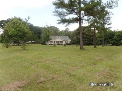 Fort Valley Single Family Home For Sale: 2256 Norwood Springs Road