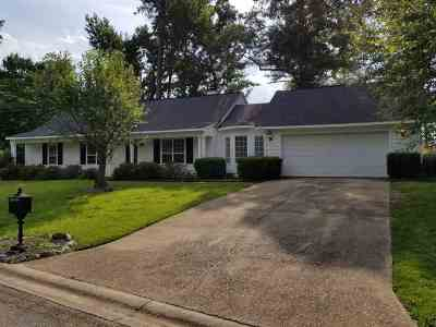 Single Family Home For Sale: 107 Hickory Bend Drive