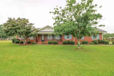 Single Family Home For Sale: 112 Van Drive