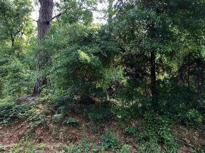 Residential Lots & Land For Sale: 3154 Lakeshore Drive