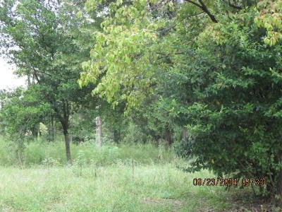 Macon Residential Lots & Land For Sale: 547 Moreland Avenue