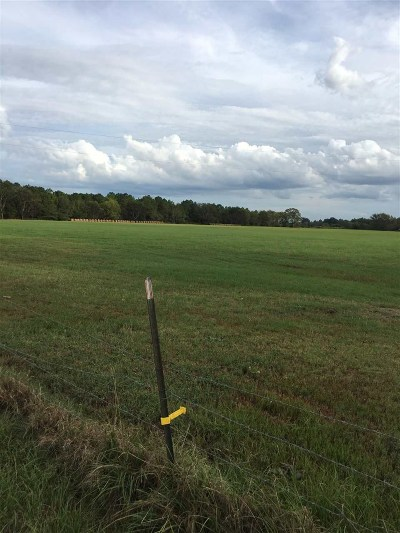 Bibb County Residential Lots & Land For Sale: 4910 Newberry Road