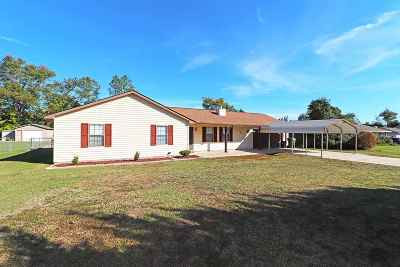 Warner Robins Single Family Home For Sale: 225 Sentry Oaks Drive