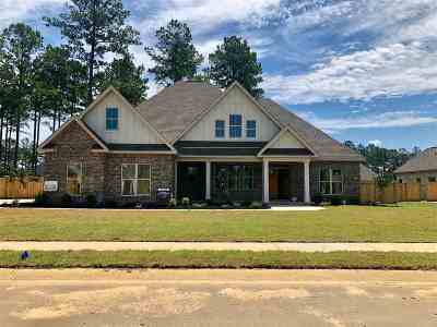 Single Family Home For Sale: 401 Larkwood Bend