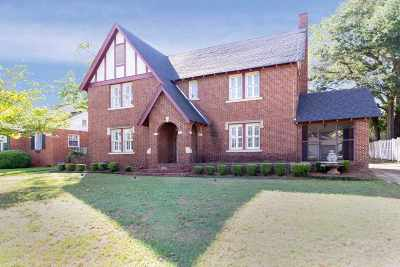 Macon Single Family Home For Sale: 235 Pio Nono Avenue