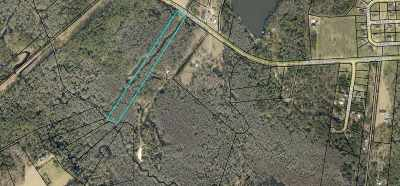 Kathleen Residential Lots & Land For Sale: 428 Bear Branch Rd