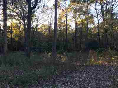 Centerville Residential Lots & Land For Sale: 307 Dogwood Glen Drive