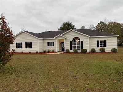 Bibb County, Crawford County, Houston County, Peach County Single Family Home For Sale: 127 Feagin Mill Road