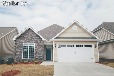 Single Family Home For Sale: 158 Turning Leaf Lane