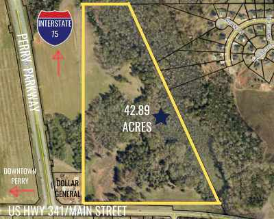 Houston County Residential Lots & Land For Sale: S Hwy 341