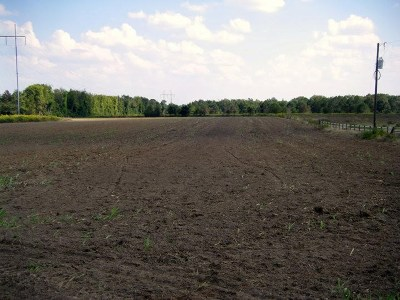 Byron Residential Lots & Land For Sale: Lot 5b(9.63 Ac) Newell Road