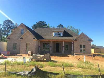 Single Family Home For Sale: 234 Woodland Blvd
