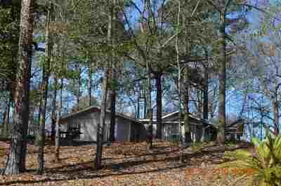 Single Family Home For Sale: 201 Morgan Drive