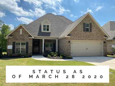Houston County, Peach County Single Family Home For Sale: 200 Landings Pointe Lane