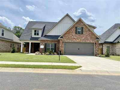 Houston County, Peach County Single Family Home For Sale: 206 Landings Pointe Lane